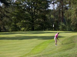 Lid worden van De Rosendaelsche Golfclub